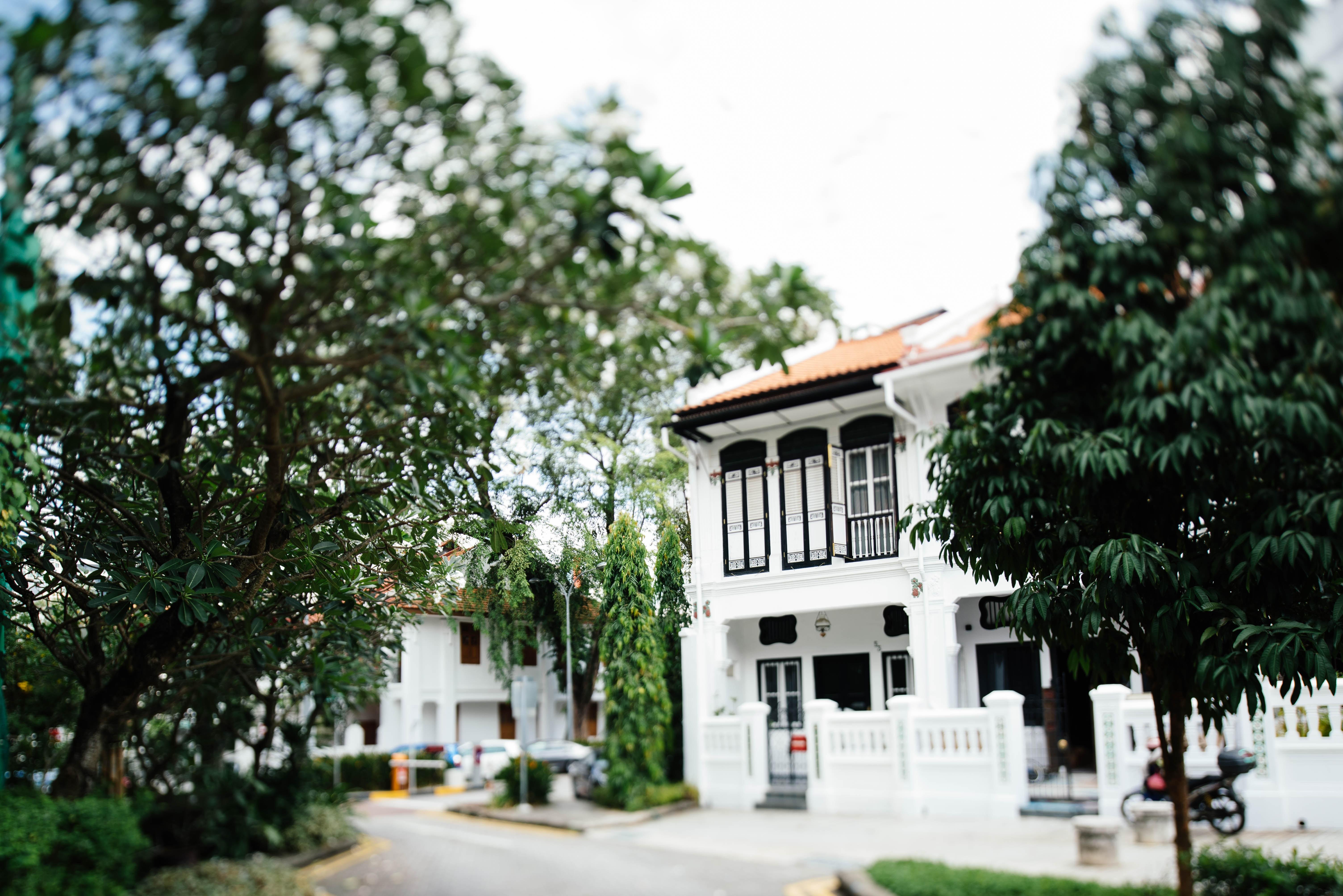 Maison blanche avec arbres dans petit quartier
