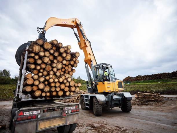 Transport avec engin chantier de rondins de bois pour une construction passive